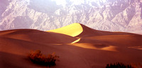 DEATH VALLEY DUNE - Bob