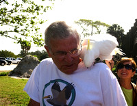 SAVE OUR SEABIRDS AT MOTE- 2014